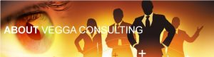 About Vegga Consulting